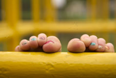 色的脚趾 免版税库存图片