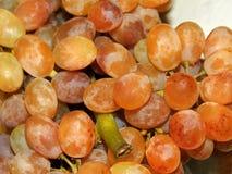 色的葡萄 库存照片