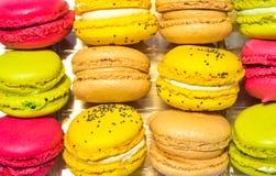 色的蛋白杏仁饼干箱子 免版税库存图片