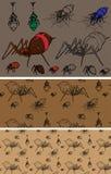 色的蜘蛛 图库摄影