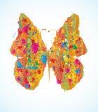 色的蝴蝶 免版税库存图片