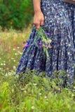色的裙子的妇女在开花的草甸 免版税库存图片