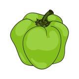 色的辣椒粉胡椒 向量 向量例证