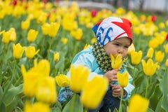 色的郁金香的领域的美丽的小女孩 免版税库存照片