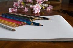 色的铅笔和花在桌上 免版税库存图片