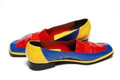 色的鞋子 免版税库存照片