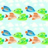 色的鱼无缝的样式 免版税库存图片