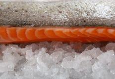 色的鱼食物柠檬卤汁玫瑰色夏天酒 库存图片