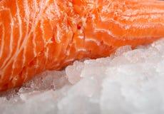 色的鱼食物柠檬卤汁玫瑰色牛排夏天酒 库存照片
