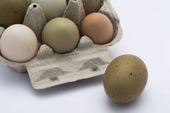色的鸡蛋连续 免版税库存图片