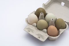 色的鸡蛋连续 免版税库存照片