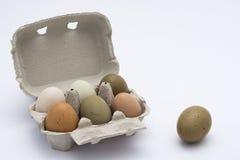 色的鸡蛋连续 免版税图库摄影
