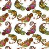 色的zentangle变色蜥蜴无缝的样式 乱画异乎寻常的野生动物 抽象lizzard 被隔绝的爬行动物的图象  皇族释放例证