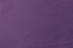 紫色皮革 免版税库存图片
