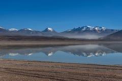 绿色盐水湖,拉古纳verde,玻利维亚 库存图片