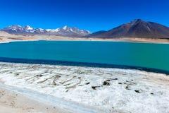 绿色盐水湖(拉古纳Verde),智利 库存图片