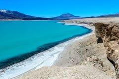 绿色盐水湖(拉古纳Verde),智利 免版税图库摄影