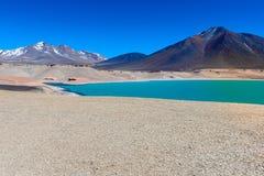绿色盐水湖(拉古纳Verde),智利 免版税库存图片