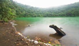 绿色盐水湖 免版税库存照片