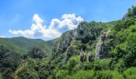 以绿色盖的风景峡谷 免版税库存照片