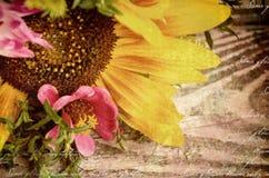 黑色看板卡空白色的花卉花的虹膜 新鲜的美丽的黄色向日葵和桃红色野花在棕色织地不很细木背景与copyspace 免版税库存照片