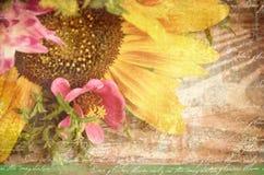 黑色看板卡空白色的花卉花的虹膜 新鲜的美丽的黄色向日葵和桃红色野花在棕色织地不很细木背景与copyspace 免版税库存图片