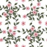 黑色看板卡空白色的花卉花的虹膜 玫瑰花束, 免版税图库摄影