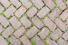 绿色石地板纹理路面设计 库存图片
