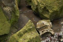 绿色石头在庭院里 免版税图库摄影