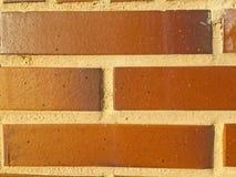 绿色砖纹理  库存图片