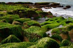 绿色礁石 库存照片
