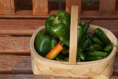 绿色票据胡椒和绿色辣椒 图库摄影