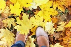 黄色秋叶和妇女脚 免版税库存图片