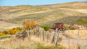 黄色秋天树和红色生锈了国家谷仓 图库摄影
