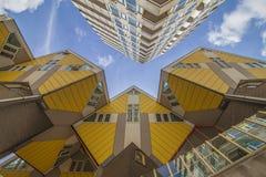 黄色立方体房子在鹿特丹 免版税库存图片