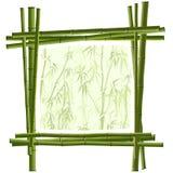 从绿色竹子的向量方形框架。 免版税库存照片