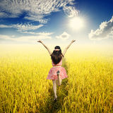黄色米领域的愉快的妇女和太阳天空在美好的天 图库摄影
