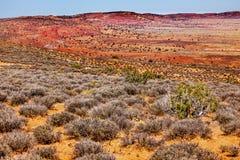 黄色红色彩绘沙漠拱门国家公园默阿布犹他 免版税库存照片
