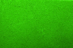 绿色纹理海绵 库存照片