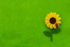 绿色纺织品背景用向日葵 免版税图库摄影