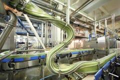 绿色罐头在传动机快速地移动在Ochakovo 免版税图库摄影