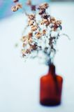 紫色美丽的花 仍然1寿命 野花花束在一个玻璃花瓶的 在瓶的好的花 表装饰与 免版税图库摄影