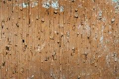 黄色老破裂的砖纹理背景 库存照片