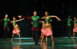 绿色背心印度记忆这奥地利的世界闪光跳舞 免版税库存照片