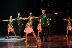 绿色背心印度记忆这奥地利的世界闪光跳舞 免版税库存图片