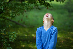 绿色背景的愉快的快乐的笑的美丽的小男孩 免版税库存图片