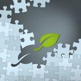 绿色能承受的解答 库存例证