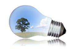 绿色能量概念 免版税库存照片