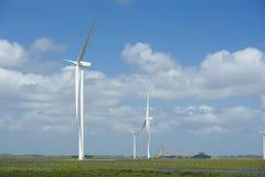 绿色能量生态风车领域天空背景 库存照片