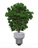 绿色能量Eco概念 图库摄影